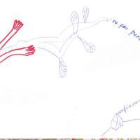 jour 10 - ne pas prendre la mouche, dessin, carnet à dessin, confinement