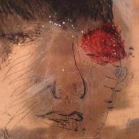 troubles au corps 00, photographie, reflet, plaque de cuivre encrée