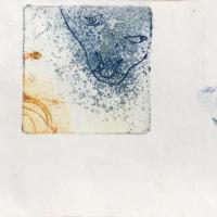 grillon 1.2, gravure, série disparition des espèces