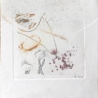 crustacé 1.2, gravure, série disparition des espèces
