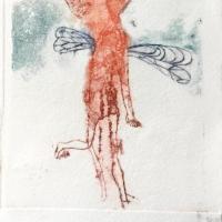 libellule, gravure, série disparition des espèces