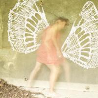 Moraczewska-disparition-ailes-neptis-rivularis