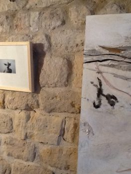accrochage exposition PROJET DOUBLE