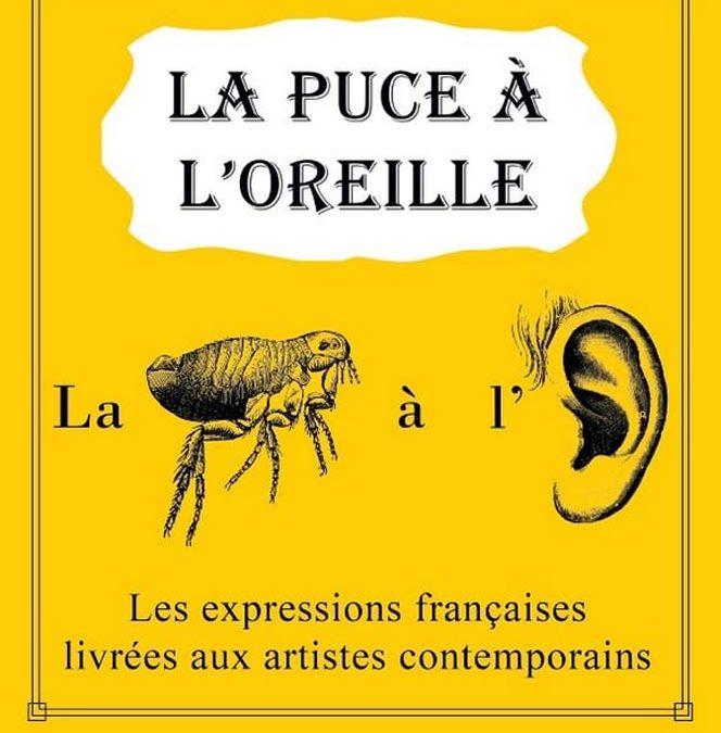 la puce à l'oreille, artothèque, Draguignan